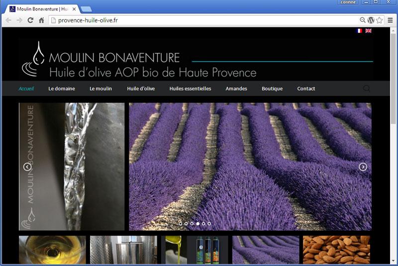 Moulin Bonaventure